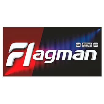 Аккумулятор для грузовиков Flagman 31S-1000 уни резьба фото 340x340