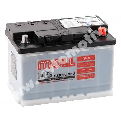 MOLL MG Standart 75.0 (R) фото 400x400
