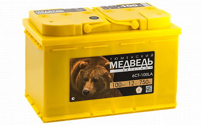 Автомобильный аккумулятор Тюменский Медведь 100.1 фото 401x250