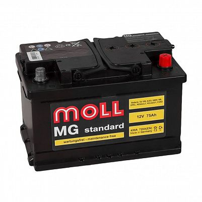 MOLL MG Standart 75.0 (SR) фото 401x401